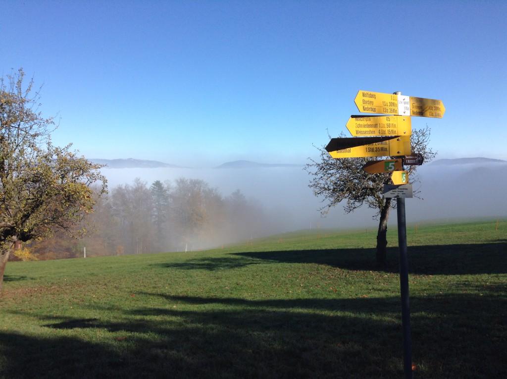 Raus aus dem Nebel