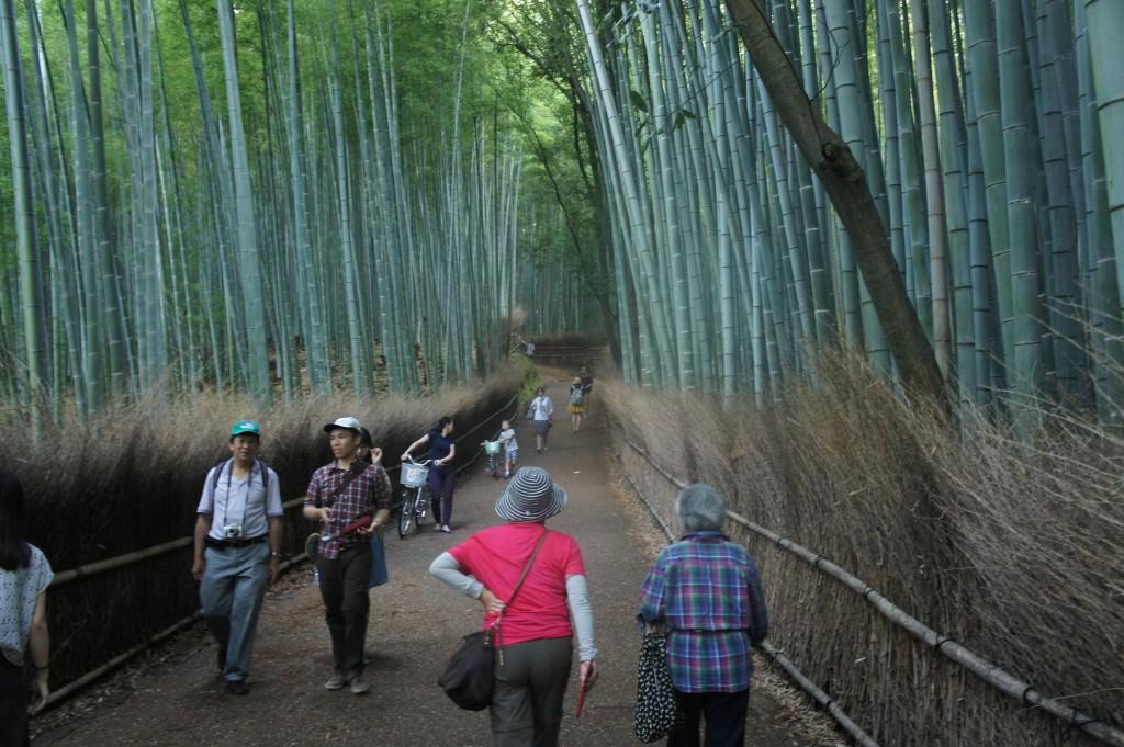 Kioto, Bambuswald